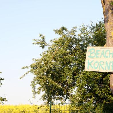 Beach im Kornfeld am Rapsfeld