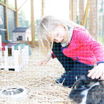 Kaninchenstall im Garten